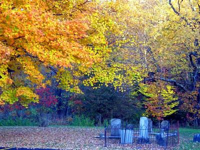 Fall NY 635 (33026465)