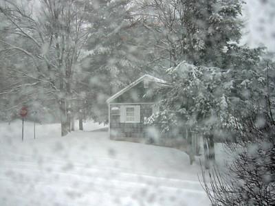 Briscoe Snow 4 (33274672)