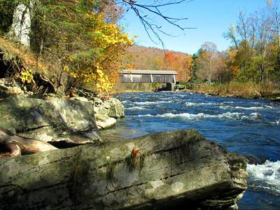 Fall NY 597 (33026459)