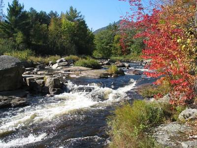 Fall NY 958 (32978983)