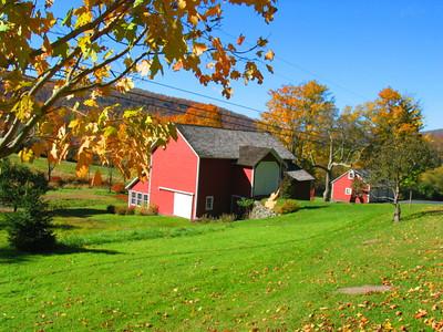 Fall NY 587 (33026458)