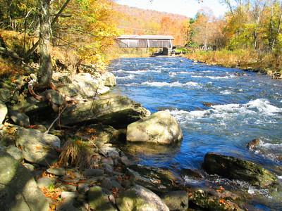 Fall NY 599 (33026460)