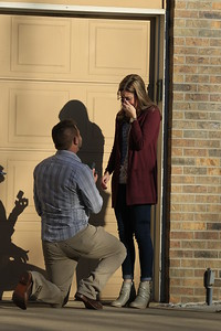 Andrew Harrison Proposal