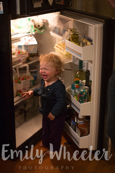 Day 314 | November 9th<br /> She figured out how to open the fridge... and then we made her shut it.