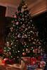 2008 Christmas holidays  Photos by Venice Paparazzi (83)