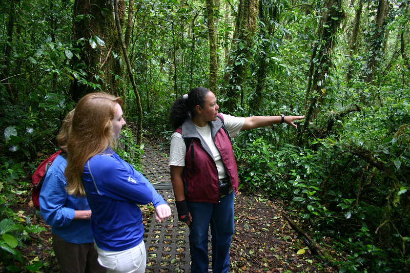 At Monteverde (which means green mountains -- just like Vermont) we hired a guide to take us through the cloud forest. Dulci was an excellent birder and very knowledgable about the ecology of the area. She worked for the Friends of the Monteverde Cloud Forest, an organization devoted to protecting the cloud forest reserve and conserving additional land to add to the reserve.