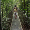 . . . hanging suspension bridges over the stream valleys, providing great view of the rainforest . . .