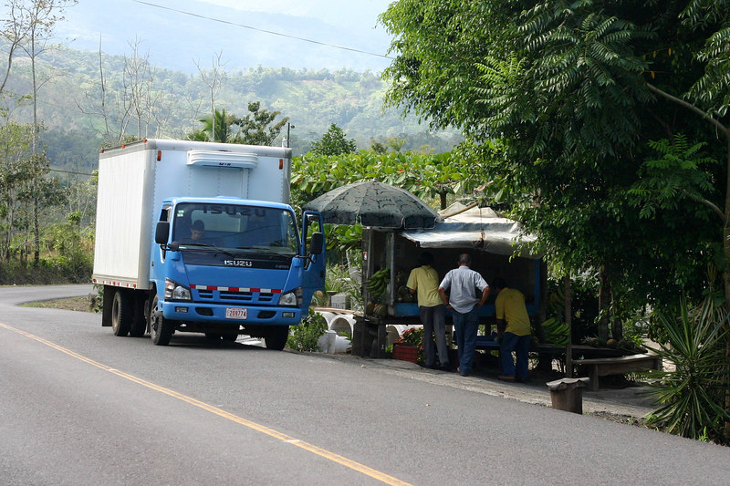 A typical scene along the roadside -- Costa Rican's stop whenever and wherever to visit a fruit stand or other roadside attraction.
