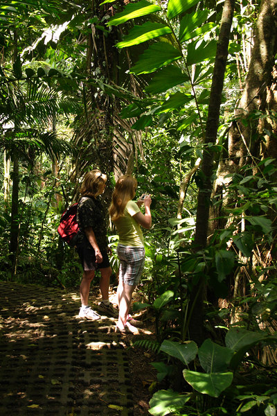 The next day we visited the Arenal Hanging Bridges, a trail in the rain forest with . . .