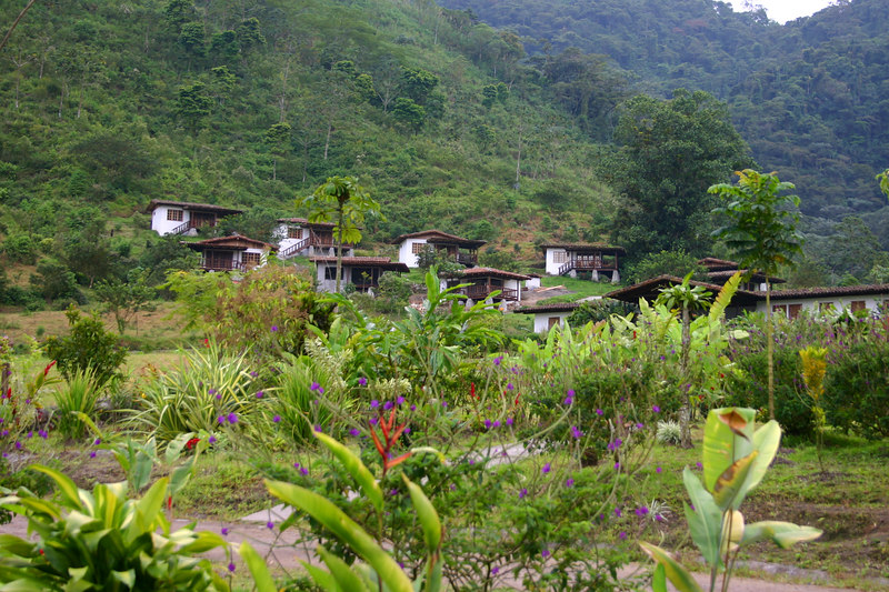 The cabinas at Rancho Margot. Ours is the one to the left of the big tree.