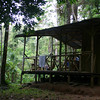 Our destination for the night -- a shelter in the rain forest.