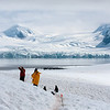 Hiking on Half Moon Island, Antarctica