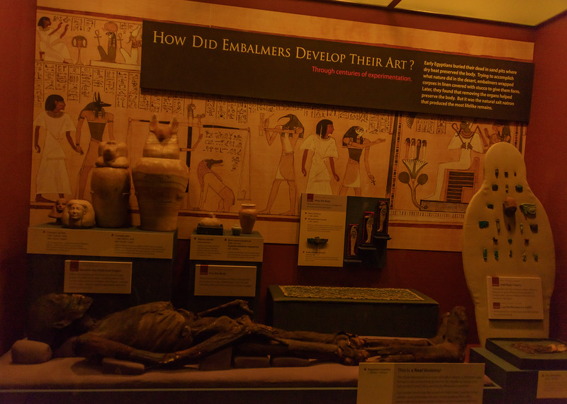 Egyptian exhibit at Smithsonian National Museum of Natural History