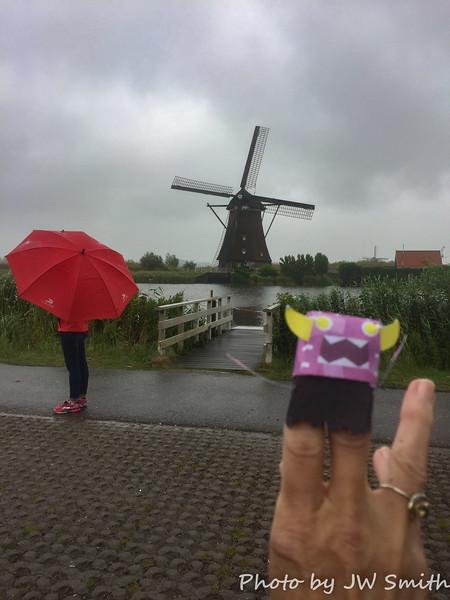 Rainy Day at Kinderdijk