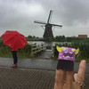 Rainy Day at Kinderdijk