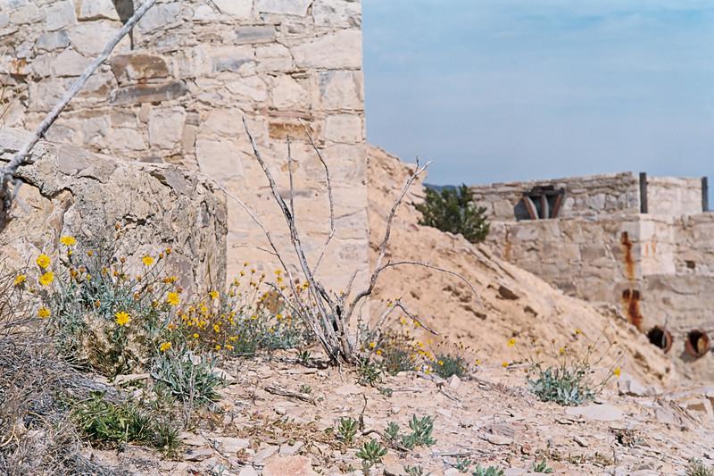 mariscal mine15