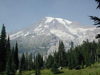Majestic Tahoma from the meadows of Paradise.