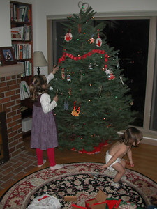 We trimmed the tree just before Grandma Susan, Grandpa Hal, and Uncle Matt arrived.