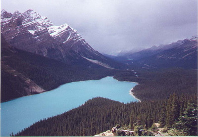 The milky glacial waters of Peyto Lake. Banff National Park, Alberta Canada, September 1992