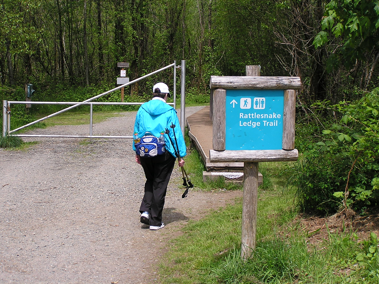 The volkswalk took us a short way towards Rattlesnake Ledge.  One never knows ...   Mary.