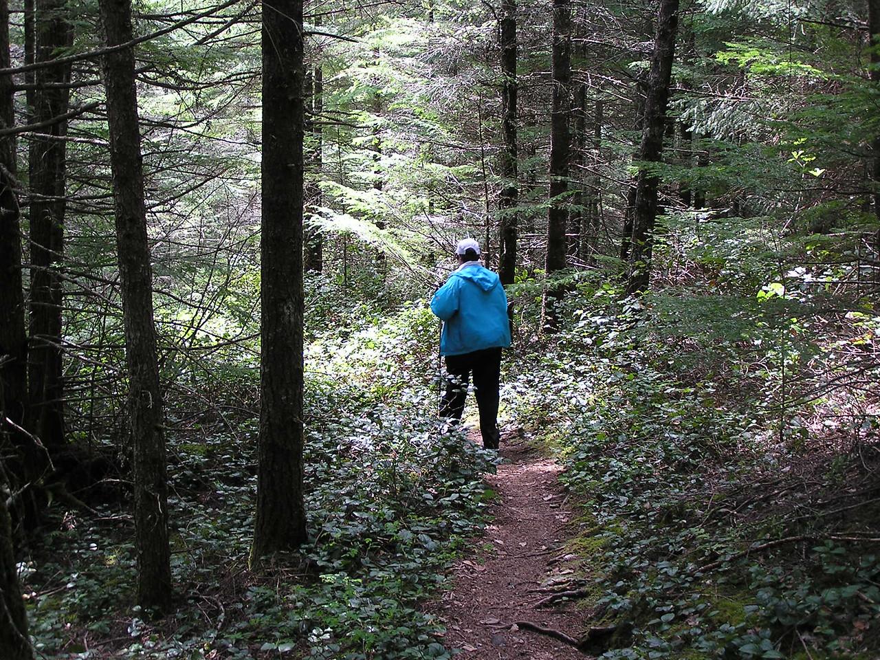 Good trail.