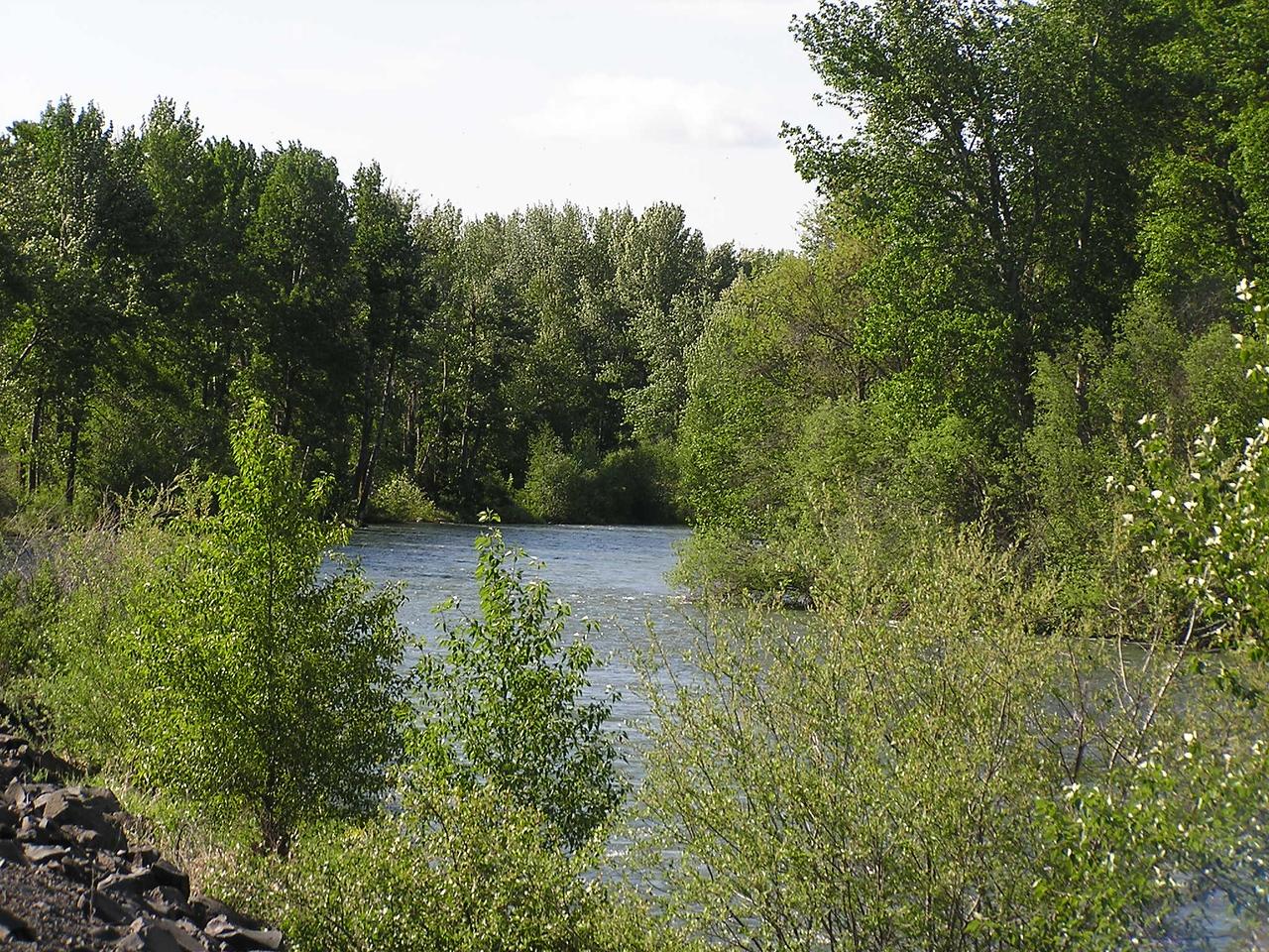07 05 13 Eburg Riverfront 020