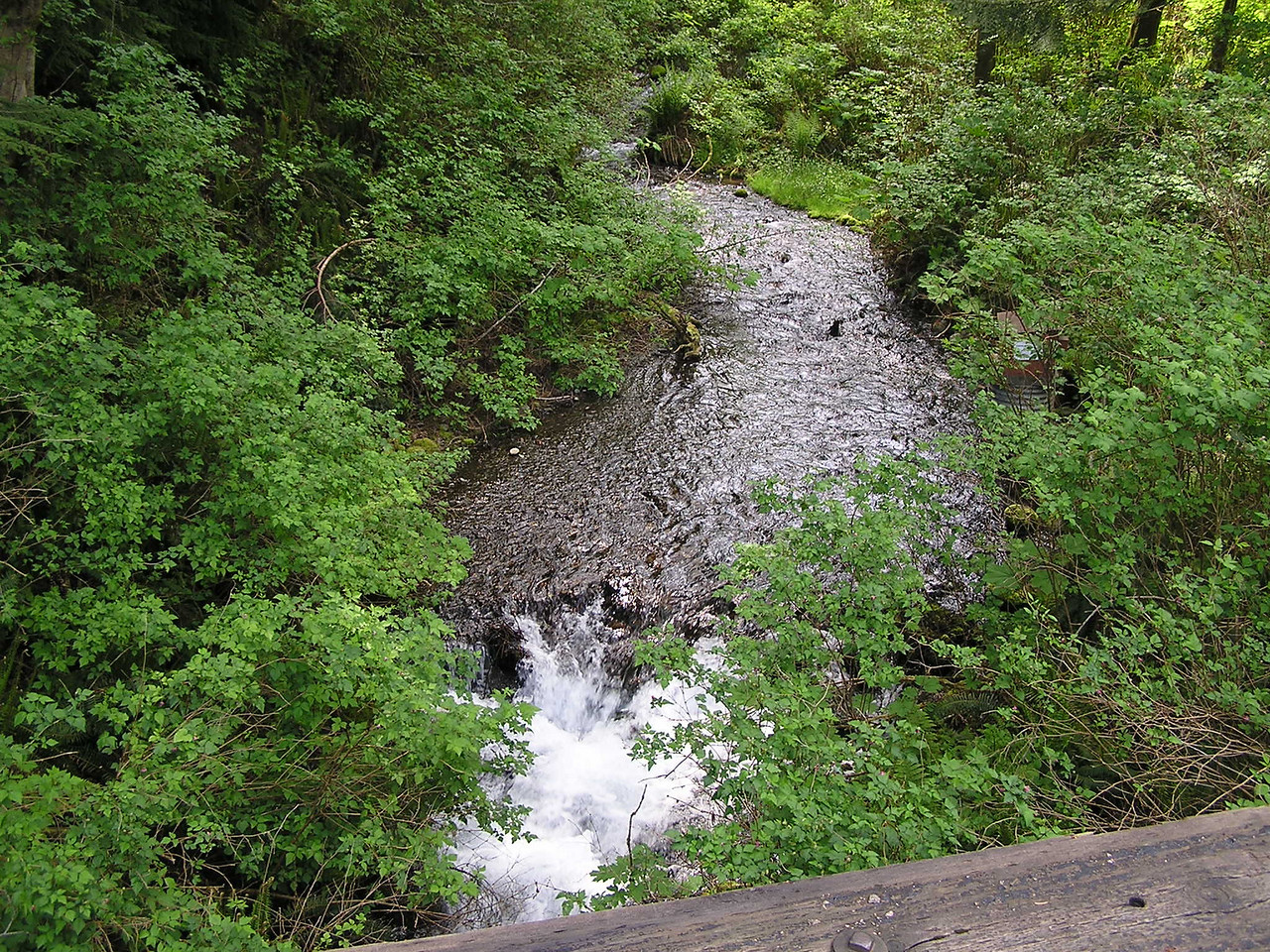 Boxley Creek looking upstream from the bridge.