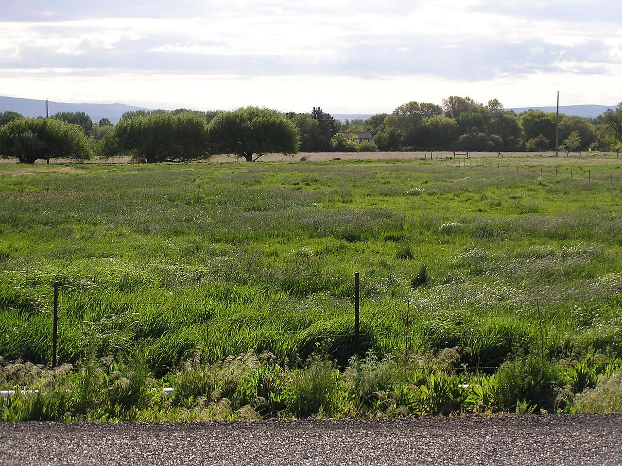 Farm fields.