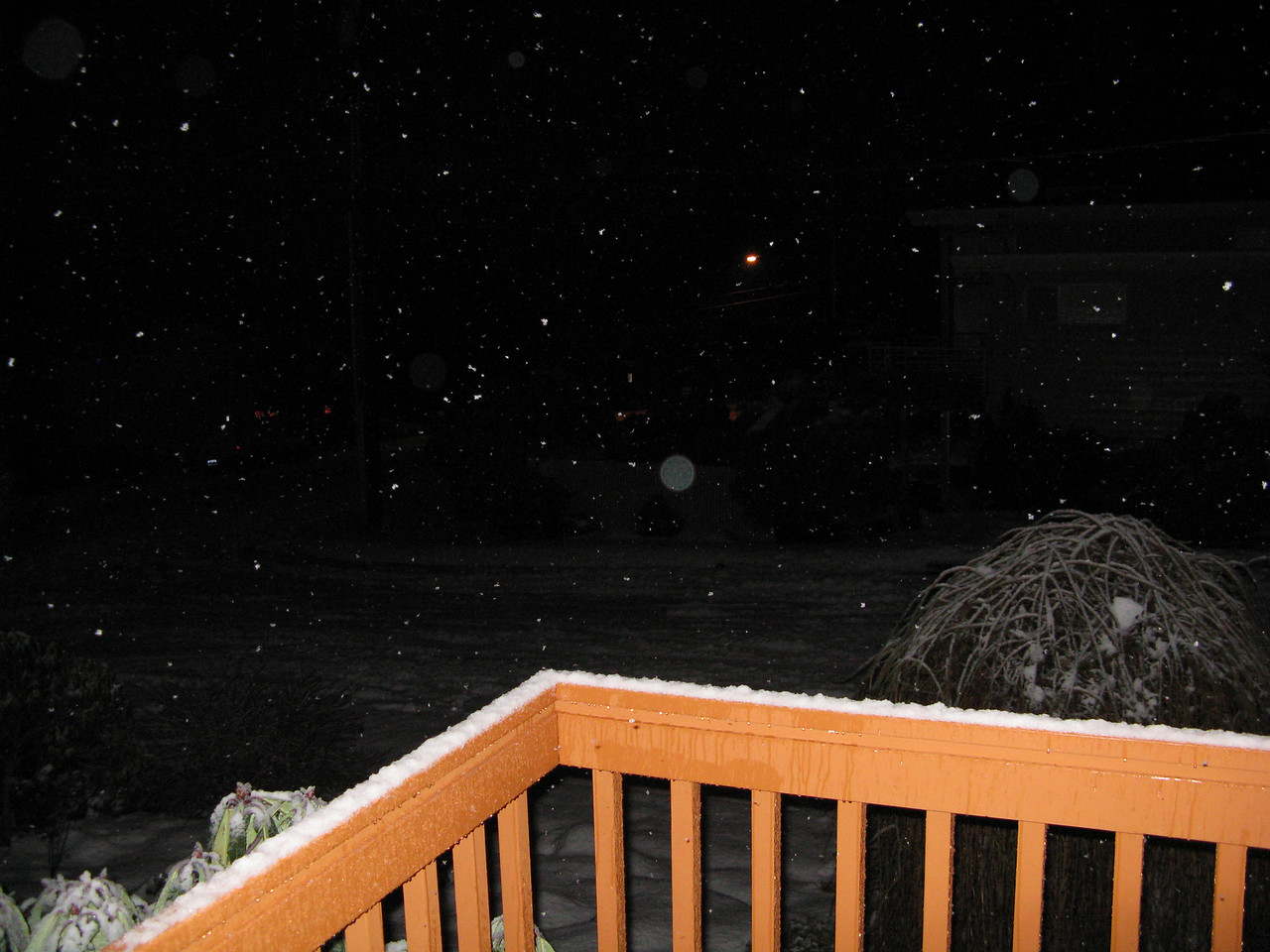 On Christmas morning, it was snowing again.  Christmas was the 13th day that we had snow on the ground.  Prior to this snowfall, the longest that we had ever had snow was 1 week in the 30 years that we have lived in Edmonds.