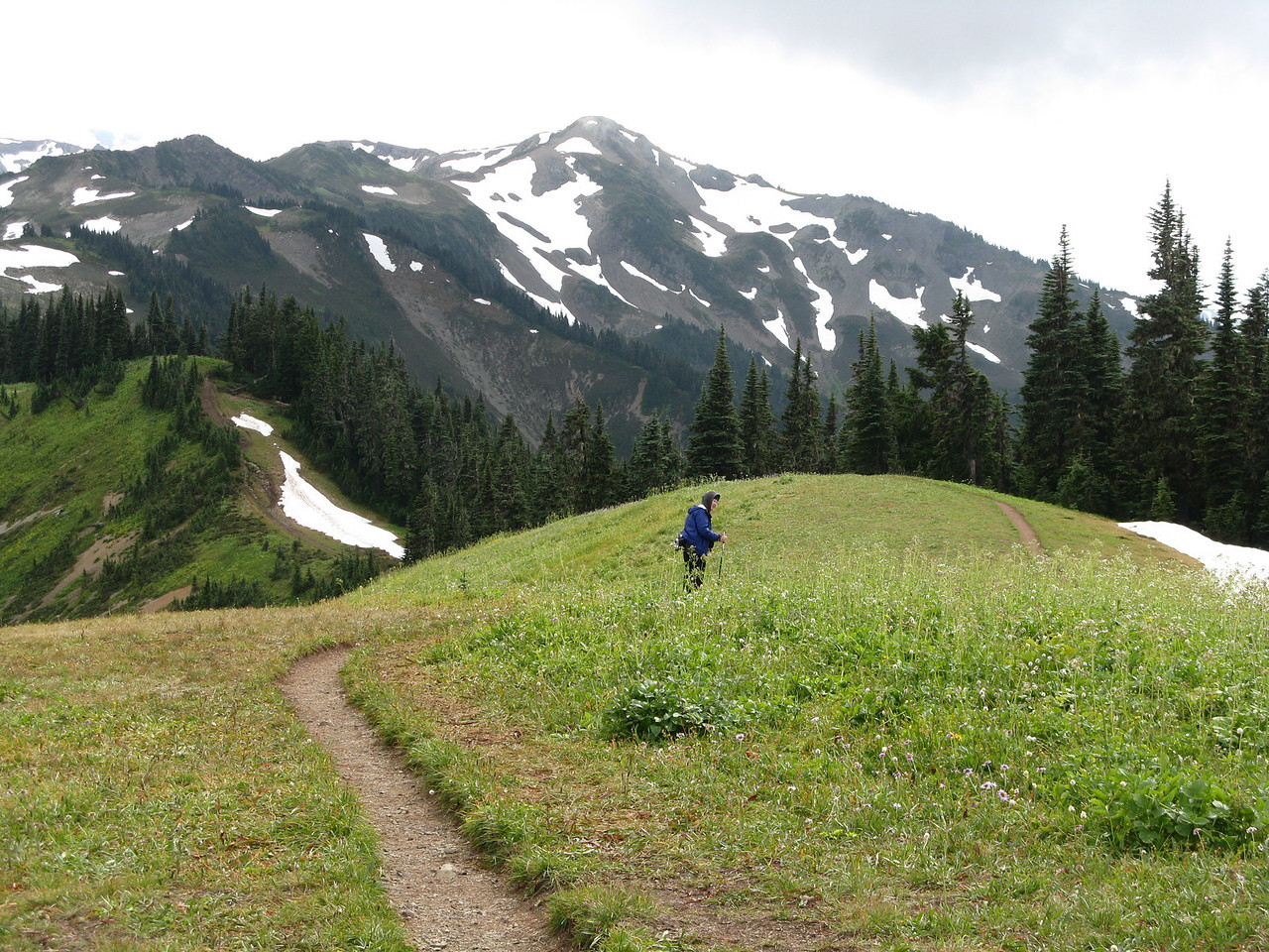 Mary in the meadow.  She has just turned to the right as she heads down the trail.
