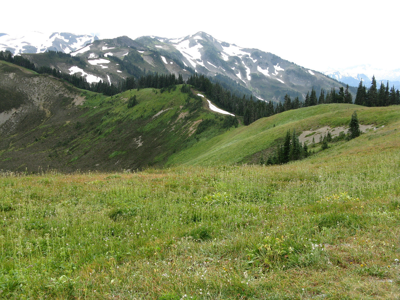 The trail extends on this ridge top to Skyline Peak.