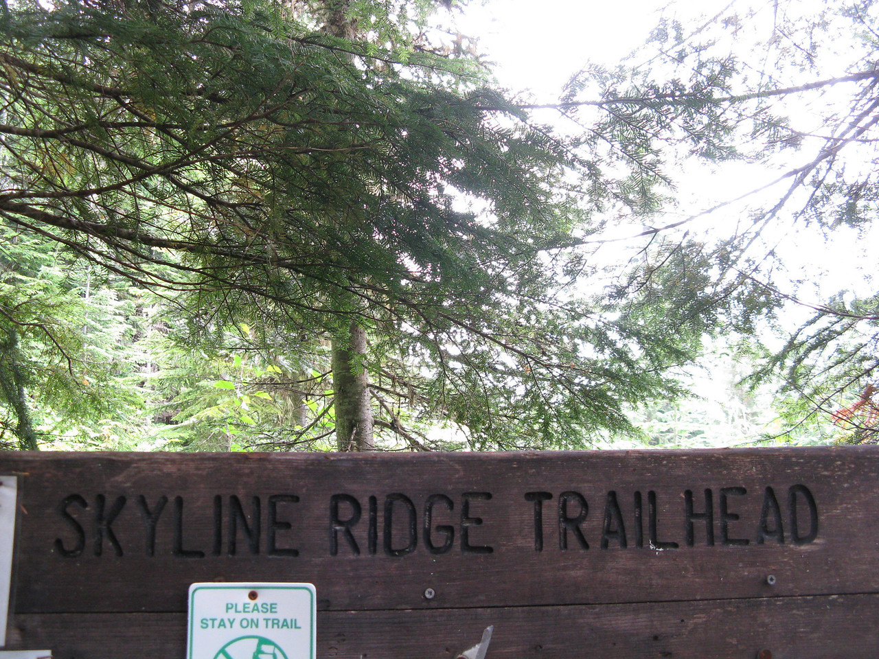 The Skyline RIdge Trailhead lies next to a rough Forest Service road that is 12.8 miles away from the Mount Baker Highway, state route 542.