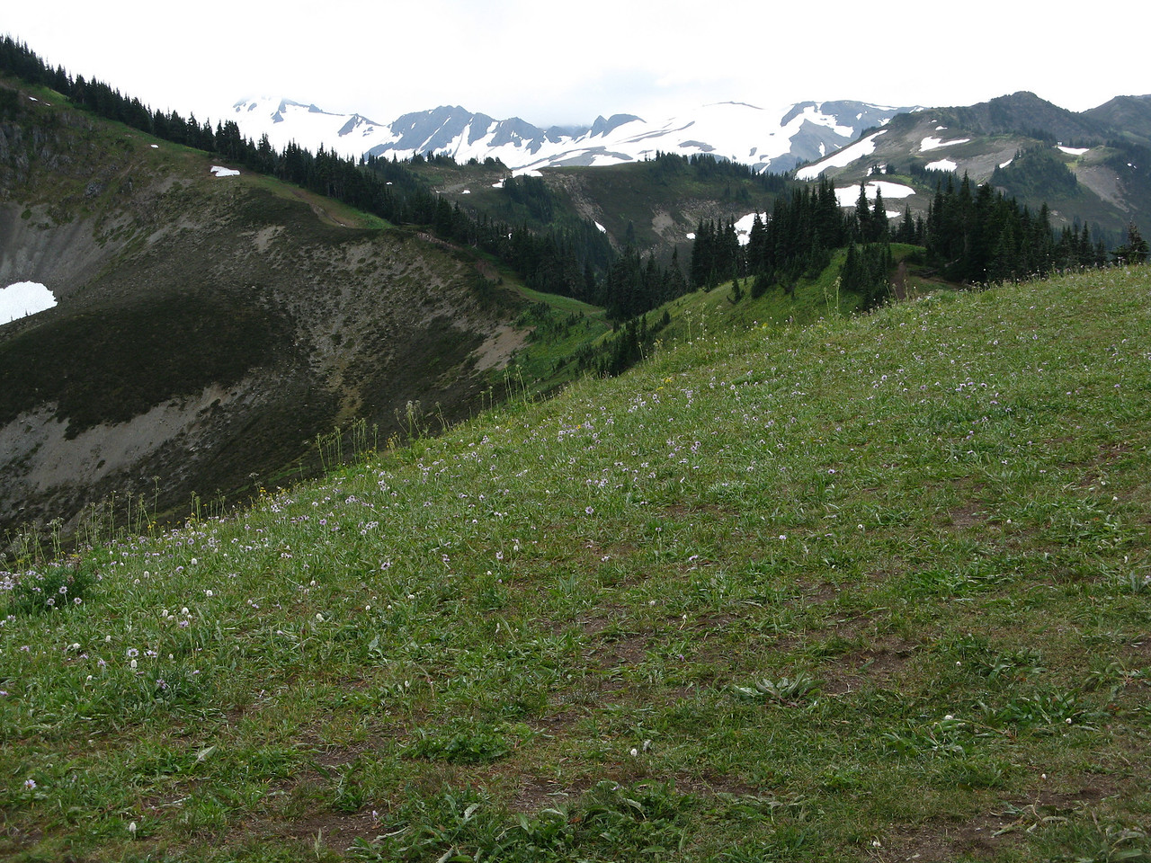 The ridge extends for a mile or more in opposite directions from the wye with the path from the trailhead.