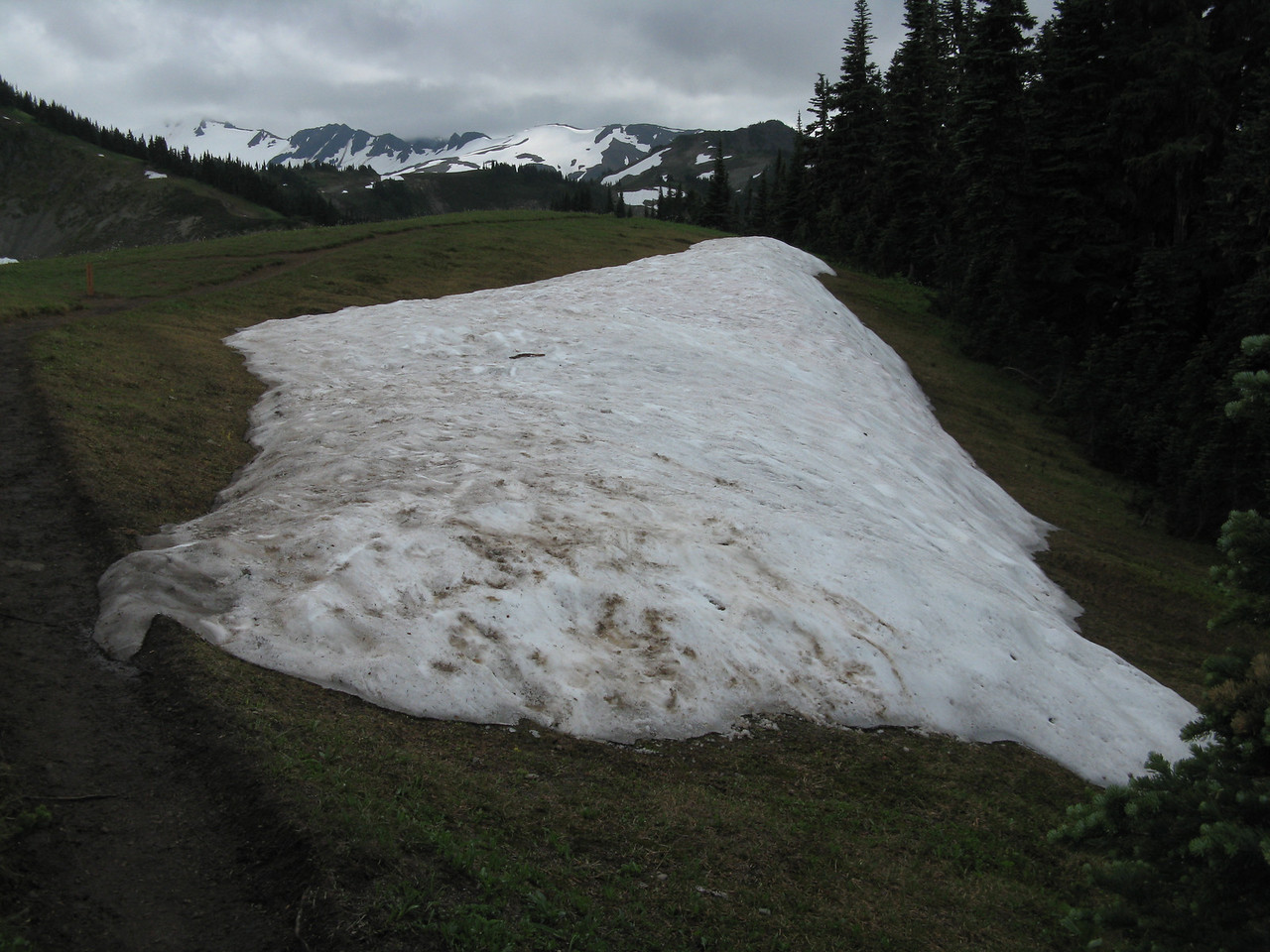 This patch of snow lays beside the trail as the path enters the meadow on the ridge.