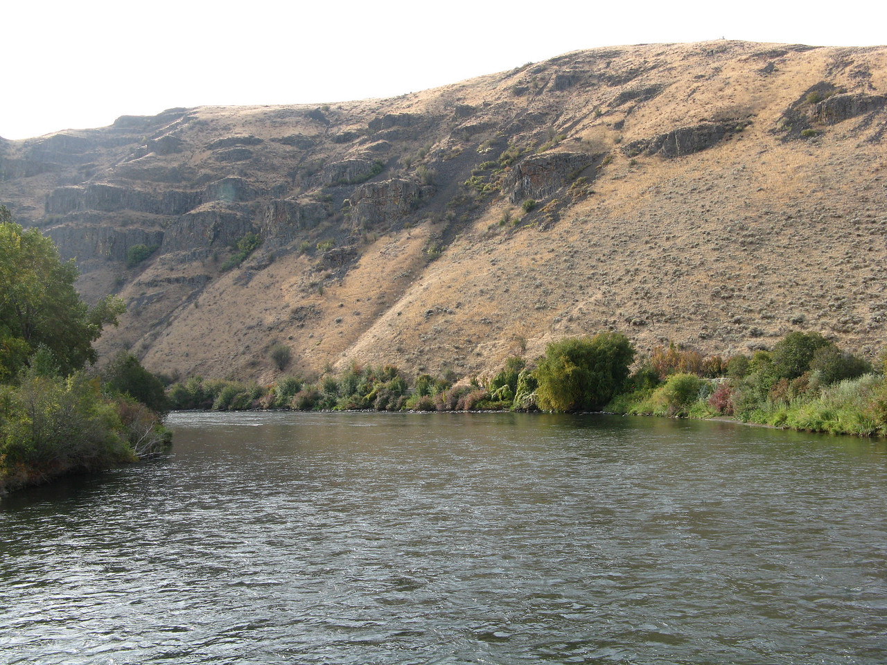 This is a downstream view of the Yakima River and volcanic rock layers above it, looking from the foot bridge.