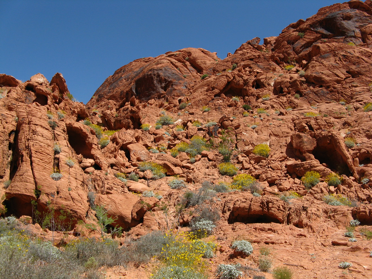 2011-04-22 Valley of Fire 012