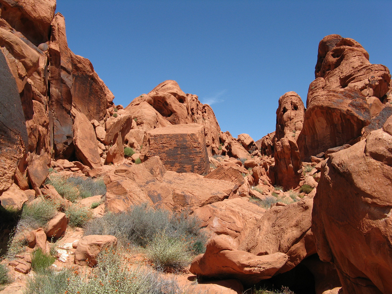 2011-04-22 Valley of Fire 005