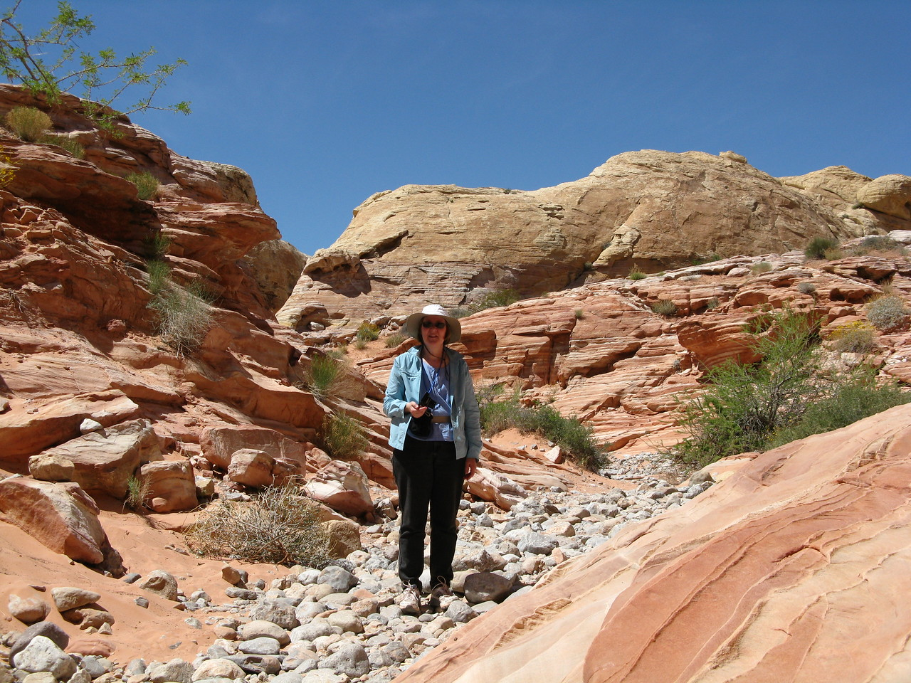 2011-04-22 Valley of Fire 049