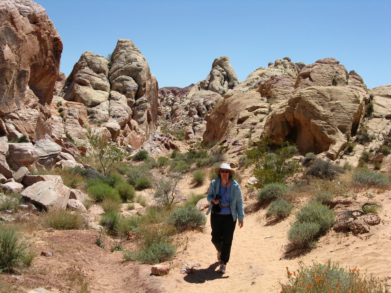 2011-04-22 Valley of Fire 055