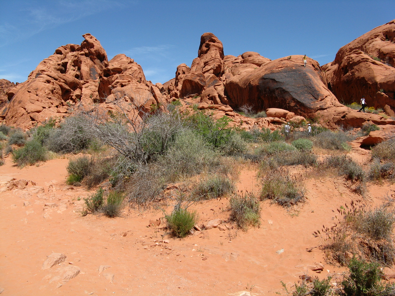 2011-04-22 Valley of Fire 023
