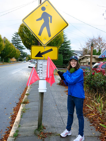 """Ann asked, """"What's this?""""   She had not seen a crossing flag  before."""