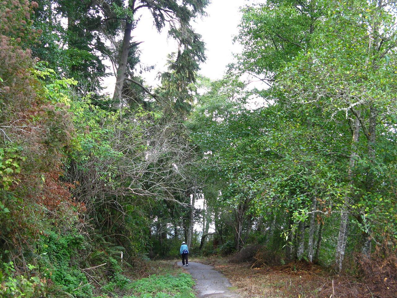 2012-09-23 Cornet Bay 037