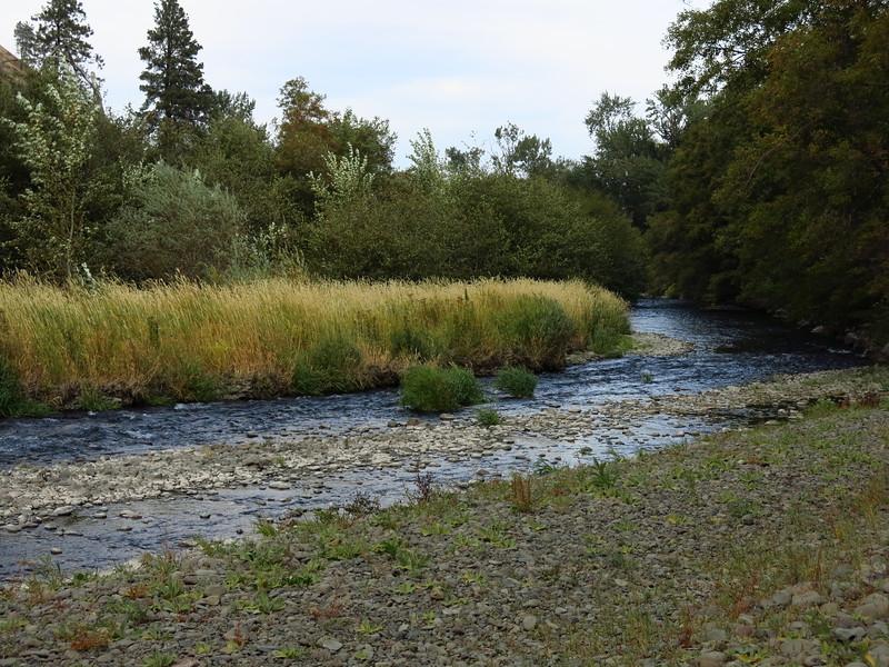 Touchet River in Dayton.