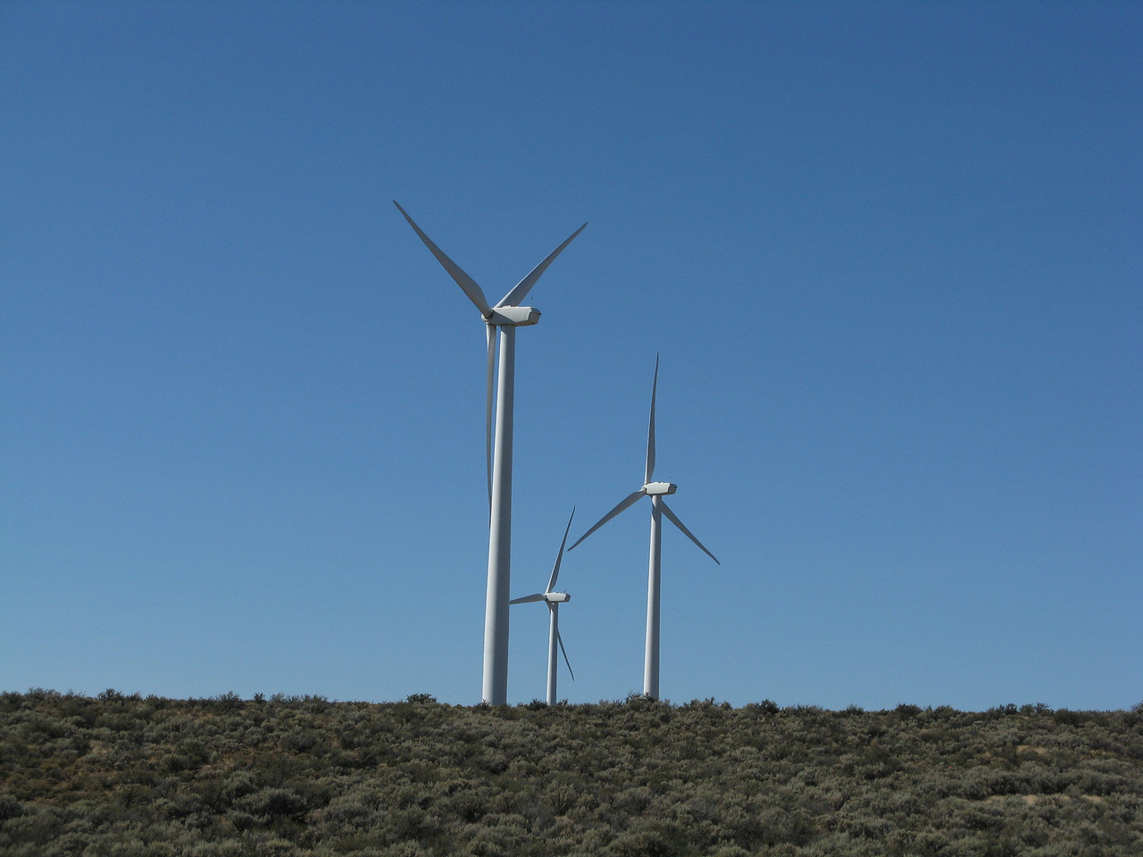 Located near Ellensburg in Kittitas County, PSE's second wind facility — Wild Horse Wind and Solar Facility – has 149 turbines spanning across 10,000 acres. The facility can generate up to 273 megawatts of electricity, enough to serve more than 80,000 homes.