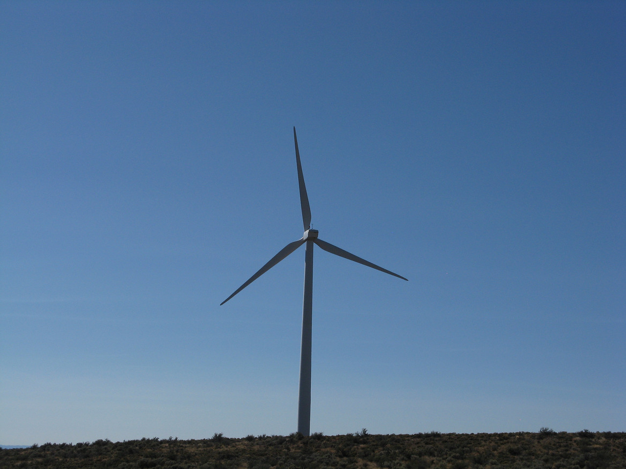 The wind mills were spinning fast in the west wind on this mid-August day..