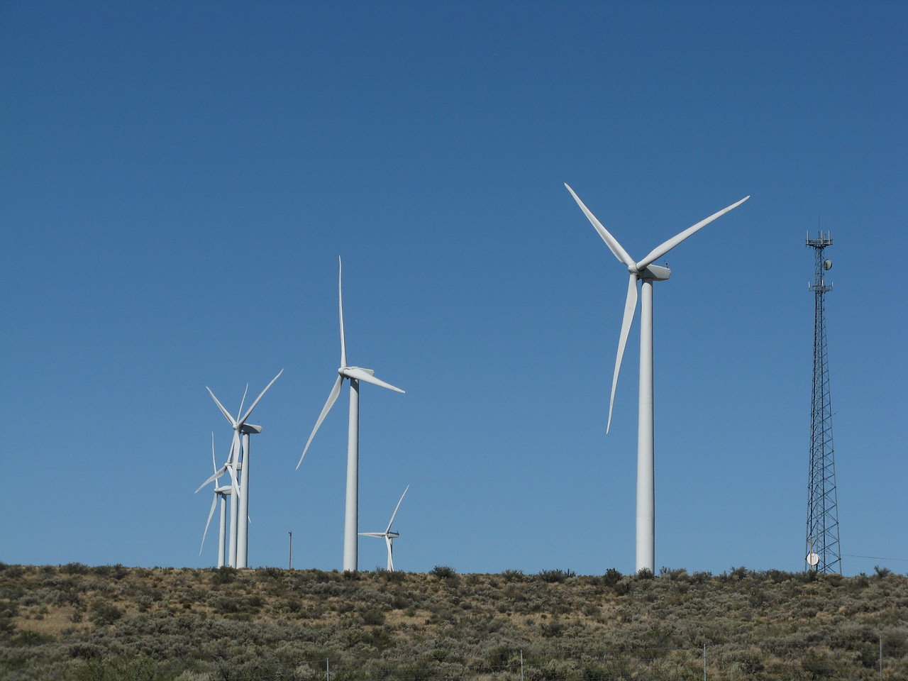 Each wind mill houses a 1.8-megawatt Vestas V80 turbine.  The turbines are placed on the high open ridge tops of Whiskey Dick Mountain, which was chosen for its energetic wind resource, remote location, and access to nearby power transmission lines. The towers are 221 feet (67 m) tall, and each rotor is 129 feet (39 m) long, with a total rotor diameter of 264 feet (80 m), larger than the wingspan of a Boeing 747. The turbines can begin producing electricity with wind speeds as low as 9 mph (14 km/h) and reach full production at 31 mph (50 km/h). They shut down at sustained wind speeds of 56 mph (90 km/h).