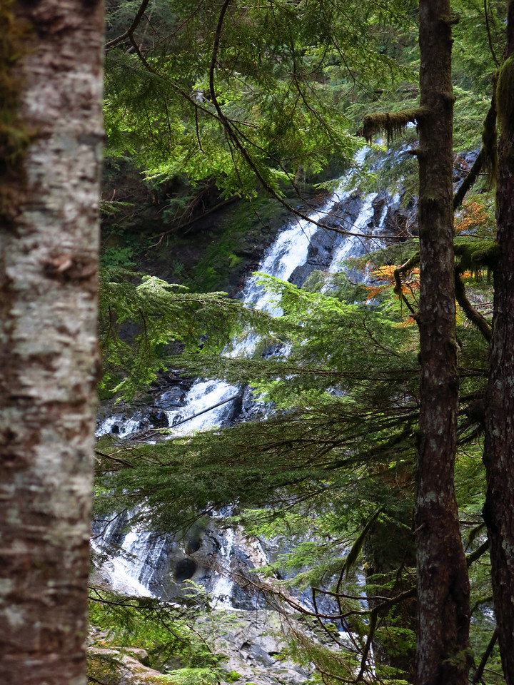 There were 3 or 4 waterfalls along the trail.  All were more or less surrounded by trees, which obstructed the view.  I set the camera to manual focus for this image, else the trees, but not the falls, would have been in focus.