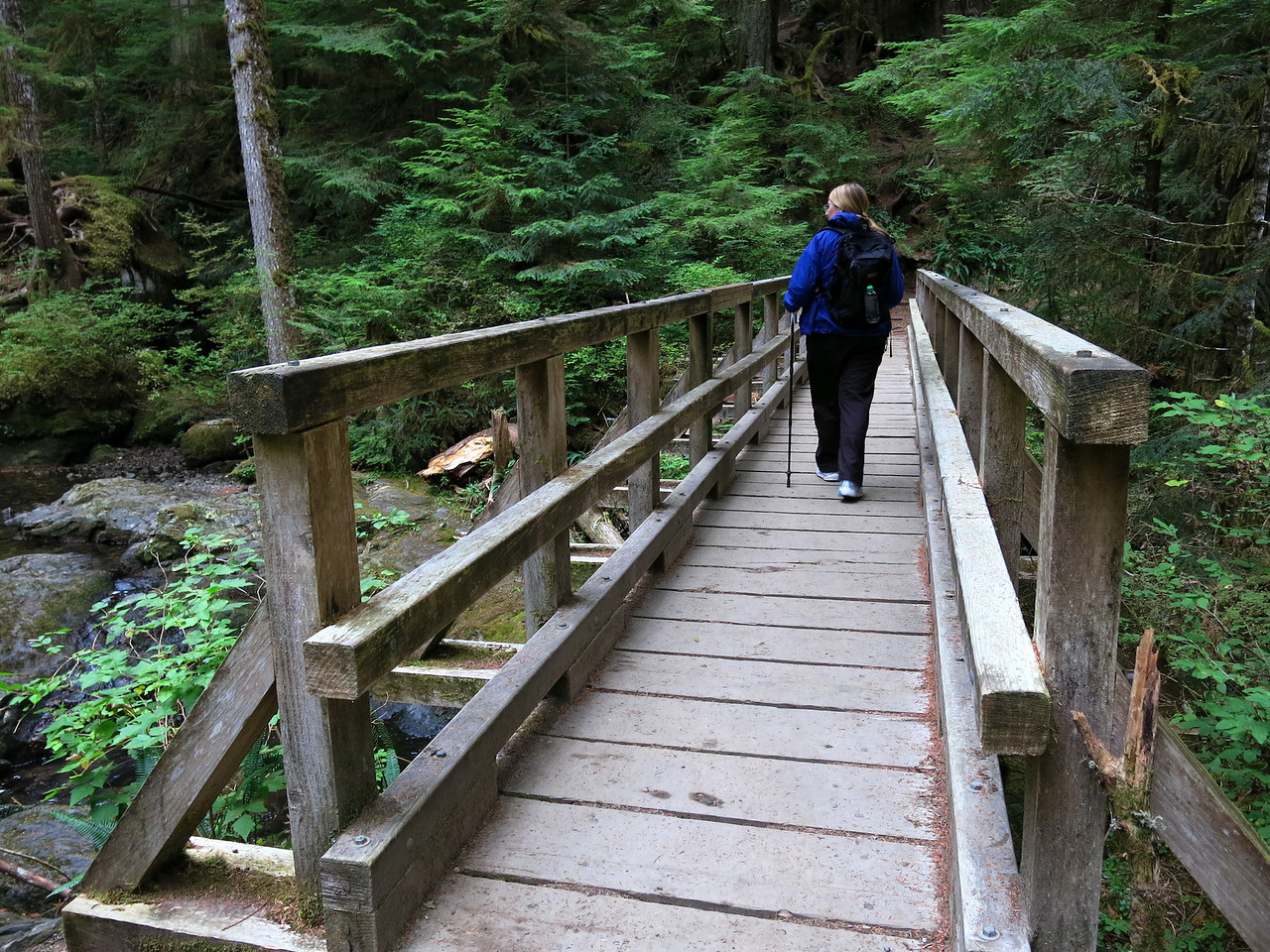After one half mile, the trail crosses Twenty-two Creek.   The creek runs north from the lake to the South Fork of the Stillaguamish River, which runs west towards Puget Sound, west of Arlington.