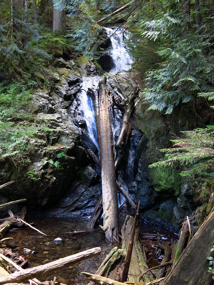 Another waterfall along the trail.  I had to scramble to the edge of a deep chasm in order to get this shot.