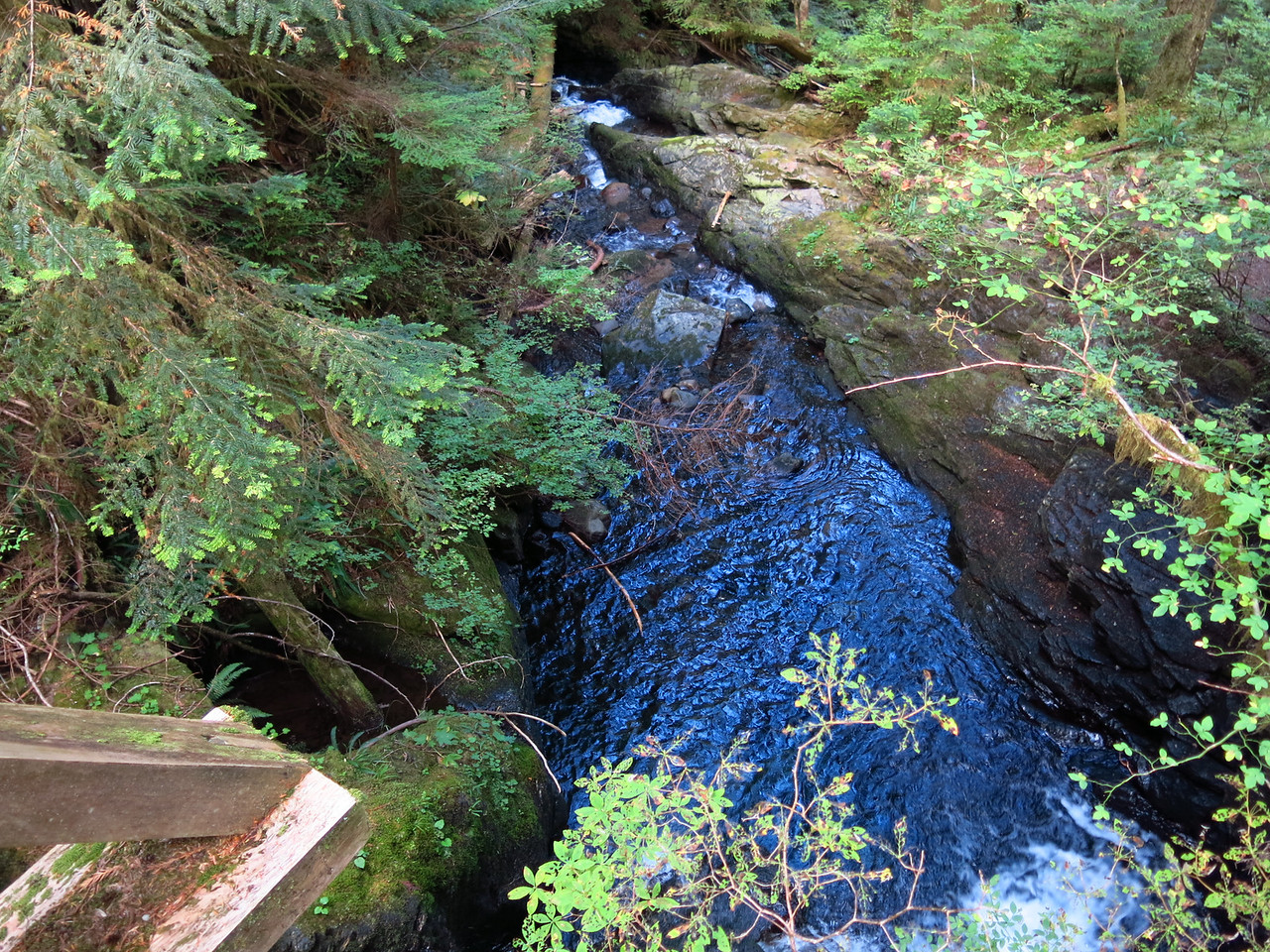 A downstream view from the bridge.